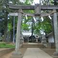 Photos: 豊玉氷川神社(練馬区豊玉南)南鳥居