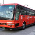 IMG_0822-e01