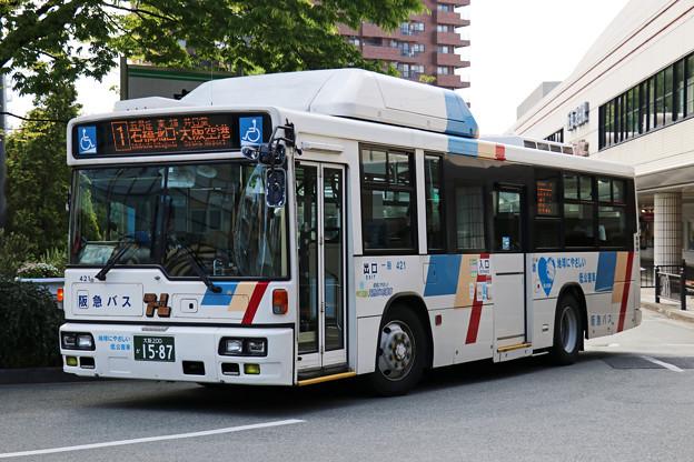 IMG_1208-e01