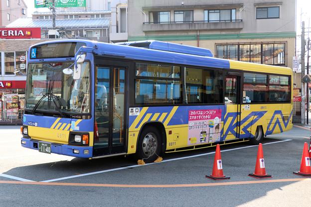 IMG_8797-e01