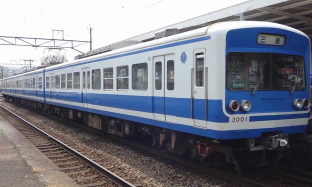 Photos: 伊豆箱根鉄道駿豆線3000系 牧之郷駅にて