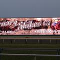 Photos: 東京競馬場ターフビジョン(フェブラリーステークス当日・全レース終了後)