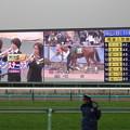 Photos: 中山競馬場ターフビジョン(中山牝馬ステークス当日)