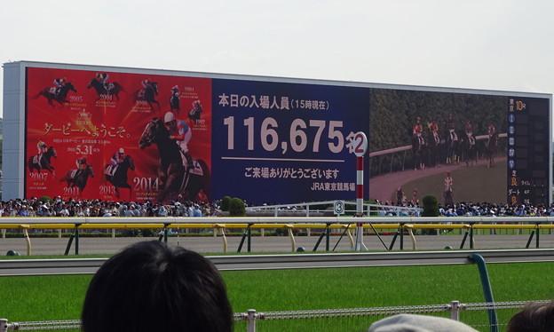 東京競馬場ターフビジョン(日本ダービー当日・本馬場入場後)