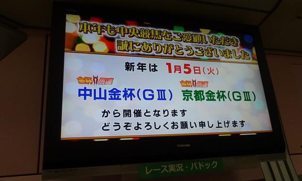 中山競馬場場内テレビ(東芝製 レグザ)