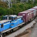京葉臨海鉄道臨海本線KD55型DL+JR貨物コキ100系