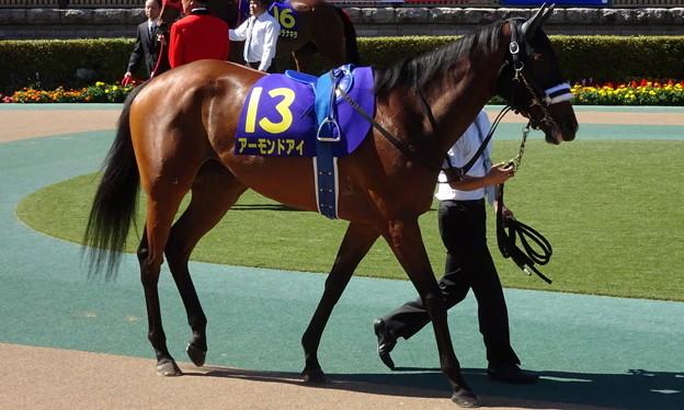 アーモンドアイ(2回東京10日 11R 第79回 優駿牝馬(オークス)(GI)出走馬)