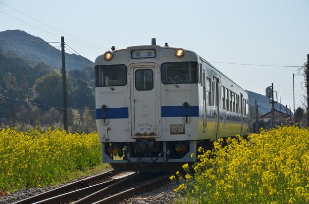 sD70_2381