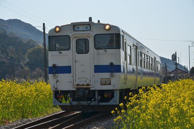 sD70_2382