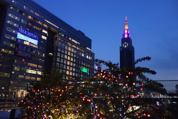 新宿 Suicaペンギン広場 夜景