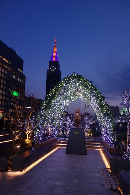 新宿 Suicaペンギン広場 イルミネーション