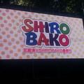 Photos: 武蔵境×SHIROBAKO春祭り  閉会式