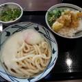 Photos: 丸亀製麺 とろ玉うどん (冷) ミニ天丼