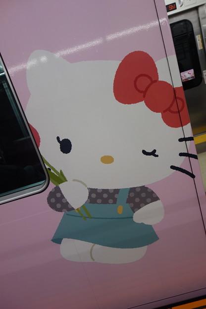 キティちゃん  可愛い