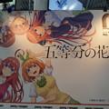 Photos: コミケ95 ぽにきゃん 五等分の花嫁