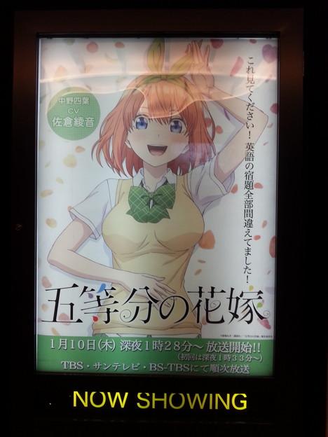 五等分の花嫁 中野四葉 ポスター