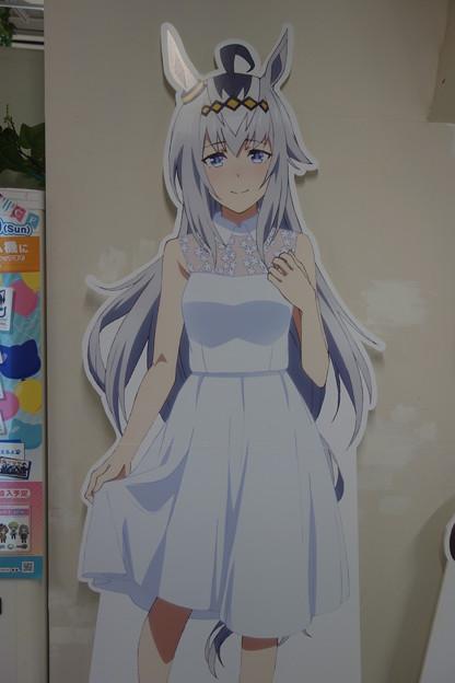 オグリ~可愛いよ(≧▽≦)