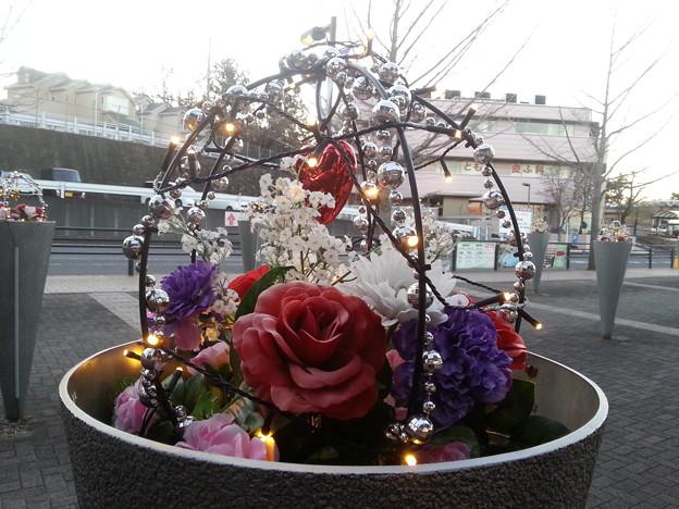 花壇のイルミネーション