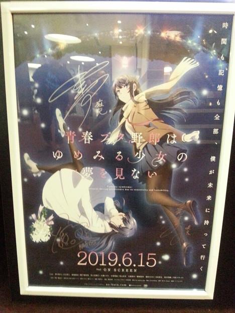劇場版  青ブタ  出演者サイン入りポスター