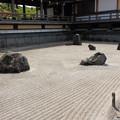 写真: 倶利伽羅不動尊 鳳凰殿の石庭