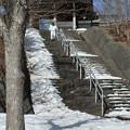写真: 慈照寺の雪階段
