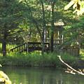 森の中の東屋
