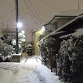 Photos: 2018年1月の大雪2
