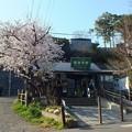 Photos: 鎌倉 極楽寺駅と丸ポストと桜2