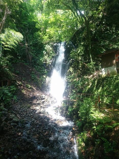 湯河原 不動の滝