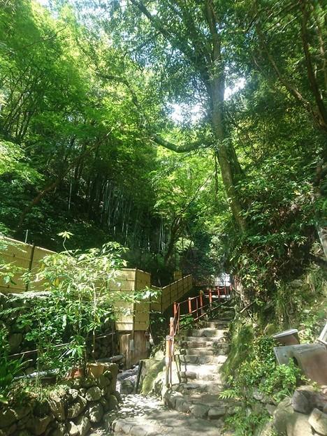 湯河原 不動の滝へ続く階段