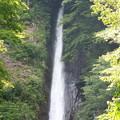 写真: 洒水の滝5