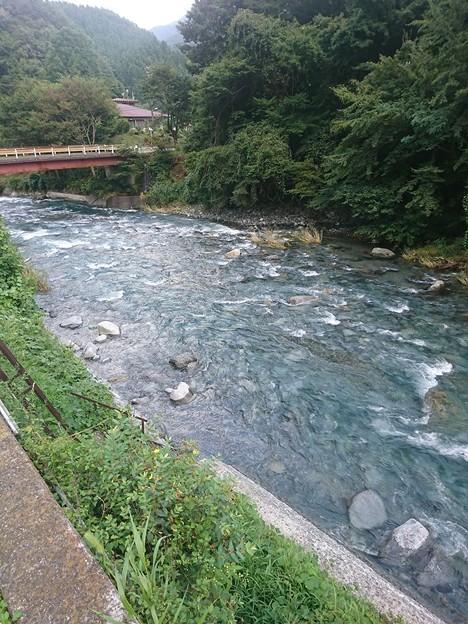 山梨県道志村 道志川2