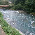 写真: 山梨県道志村 道志川2
