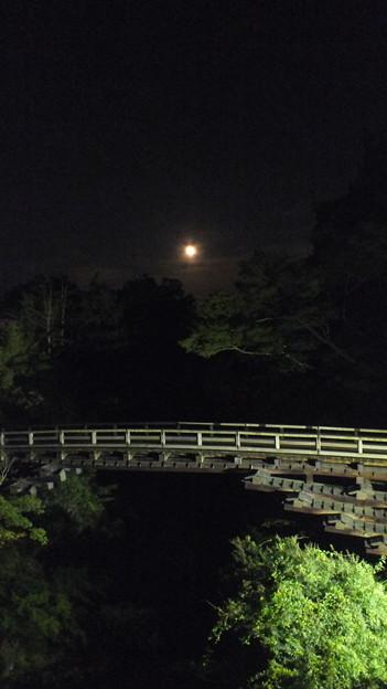 猿橋と大きな月