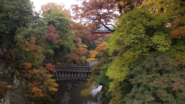 山梨県大月市 猿橋付近紅葉 2016年秋撮影