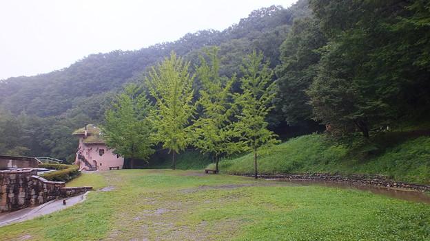 あけぼの子供の森公園