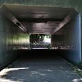 公園のトンネル。