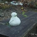 写真: 葉っぱの雪だるま