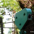 写真: 第103回モノコン~森の中でロボット発見!~