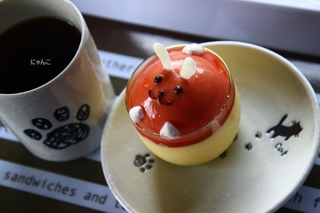 Photos: ~ウサギ、美味し~