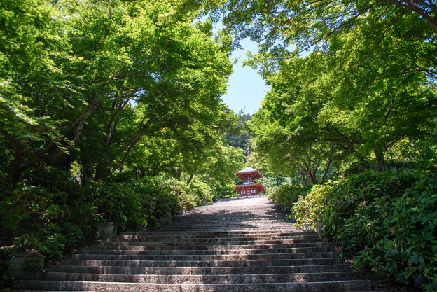 勝尾寺の境内
