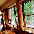 写真: 湖畔のカフェ