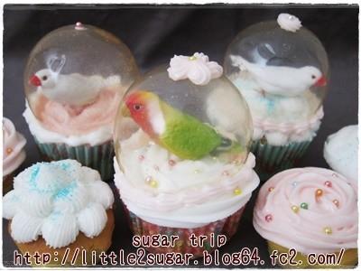 文鳥のスノードーム・カップケーキ2-4