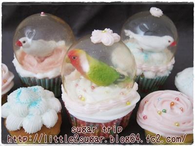 写真: 文鳥のスノードーム・カップケーキ2-4