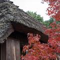 写真: 落柿舎 紅葉を添えて