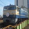 Photos: #3591 EF65 501「さくら」 2018-11-10
