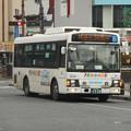 Photos: #4027 京成タウンバスT031 2019-2-12