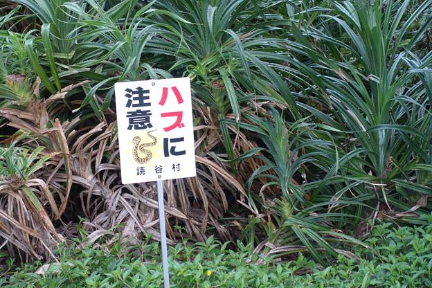 沖縄 残波岬 断崖絶壁