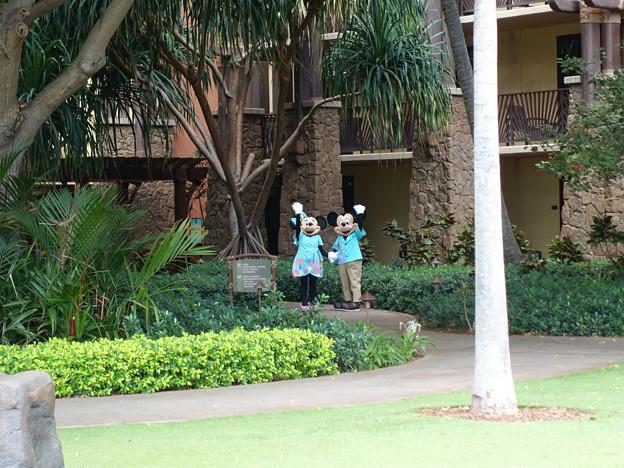ハワイ アウラニリゾート ミッキー&ミニー