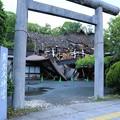 写真: 熊本大神宮